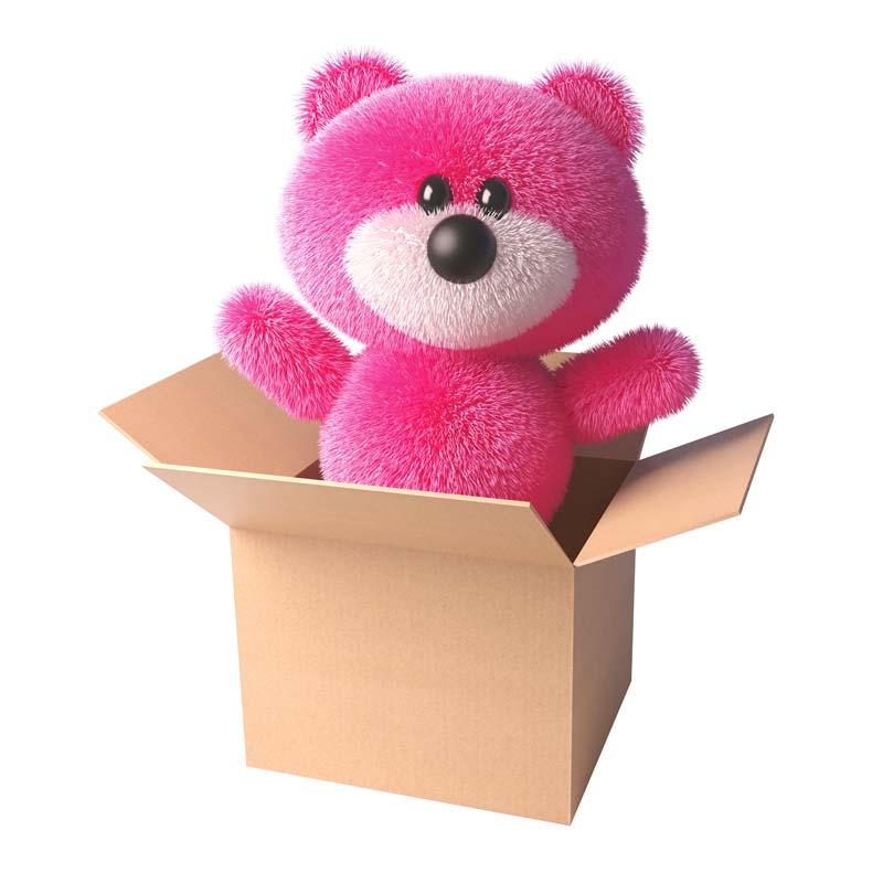 orsetto-ricchione-rosa-con-scatola-grafica-e-branding-iperattiva